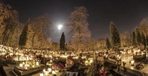 cmentarze-mzuk-walbrzych (2)