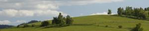 panorama-tile02